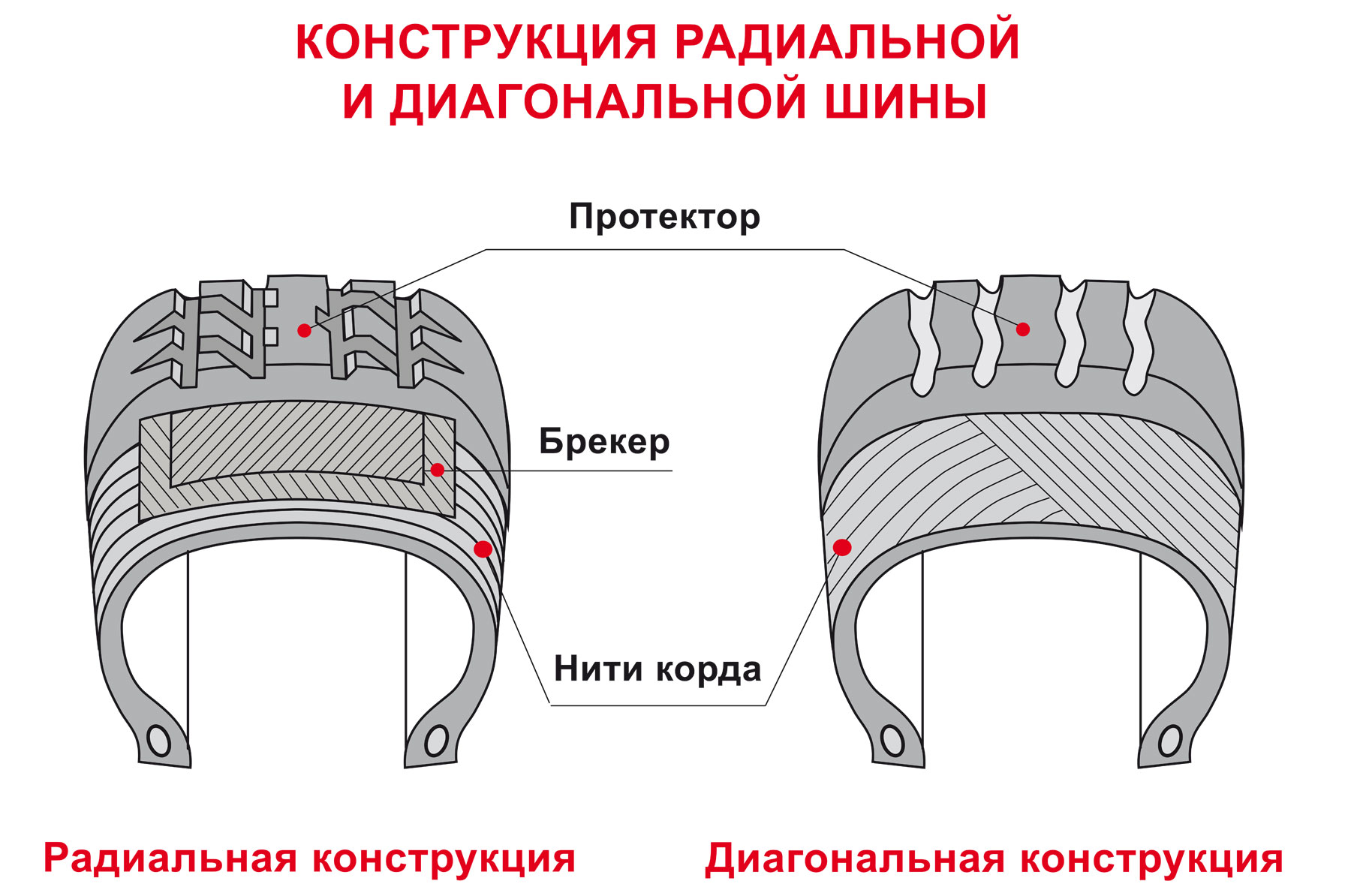 Конструкция радикальной и диагональной шины фото