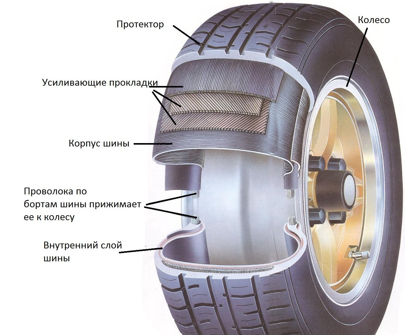 Фото конструкции шины