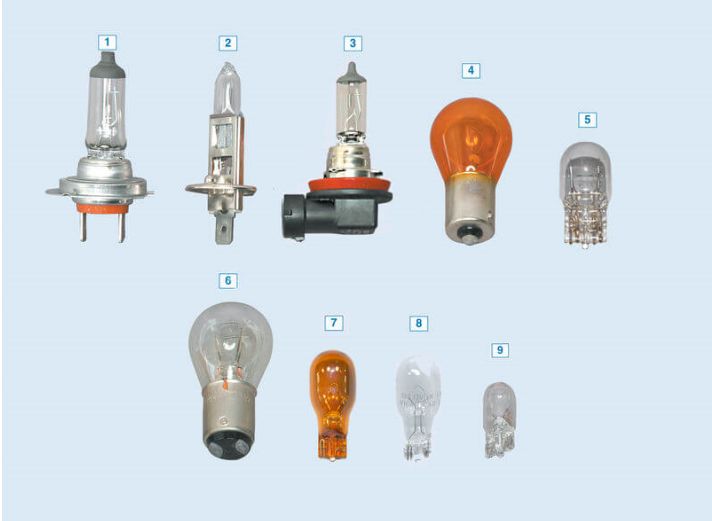 Размер и внешний вид цоколя ламп Веста